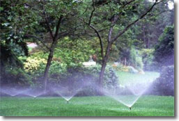 Irrigation by Greenwood Group